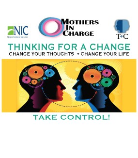 Thinking For A Change Program (T4C)